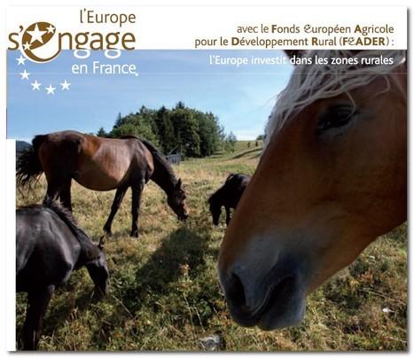 Guide des aides européennes pour la filière équine | Fonds européens en Aquitaine Limousin Poitou-Charentes | Scoop.it