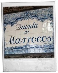 Quinta de Marrocos - Douro Region | Portuguese Wine Producers | Scoop.it