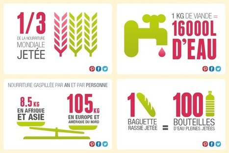 Gaspillage alimentaire, le poids des chiffres | Food waste | Gaspillage alimentaire | Scoop.it