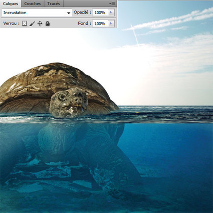 La Tortue Géante avec Photoshop | Photoshop Tutorials | Scoop.it