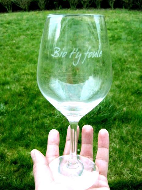 LE SALON « BIO T'Y FOULE » ET L'ASSOCIATION DES VINS S.A.I.N.S. | Actualités du monde viticole | Scoop.it