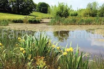 Organic farms boast 50 per cent more wildlife | News | Farmers Guardian | The Barley Mow | Scoop.it