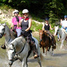 Endurance and Competitive Trail Riding