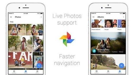 Google Foto introduce il supporto alle Live Photos di iPhone 6S e 6S Plus   Scoop Social Network   Scoop.it