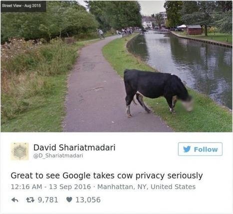 kajaani google maps thai seksi