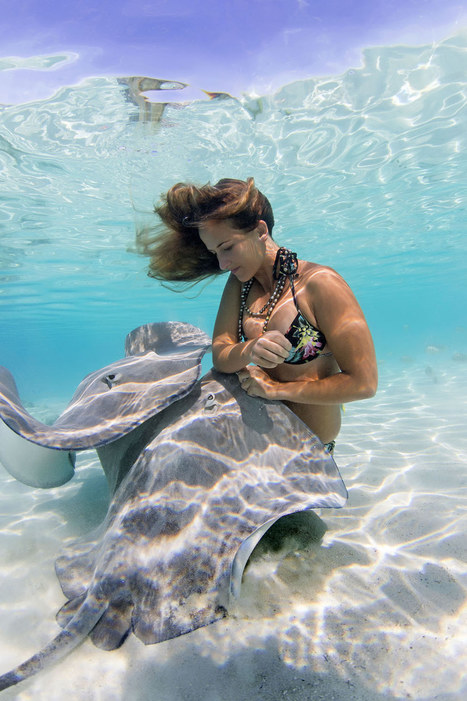 Girl with stingrays | inspiration photos | picturescollections | Scoop.it