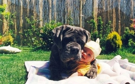 Kids and puppies: What could be cuter? | cats & dogs! | Scoop.it