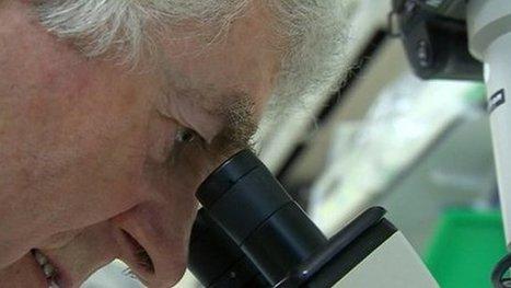 Firm's heart cells regeneration hope   Dr Twana L Sparks   Ajan Reginald   Scoop.it