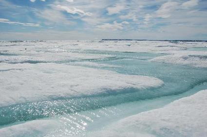 Formation of coastal sea ice in North Pacific drives ocean circulation and climate   Amocean OceanScoops   Scoop.it