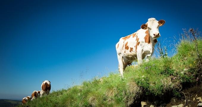 Comment l'agriculture relève ses nouveaux défis