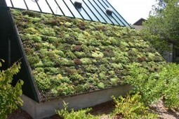 Green Roofs and Solar Panels | Vertical Farm - Food Factory | Scoop.it