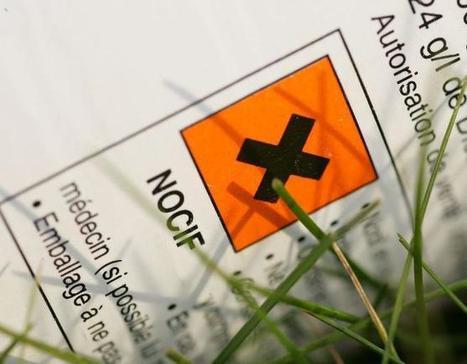 Un décret officialise le lien entre pesticides et maladie de Parkinson. | agro-media.fr | Actualité de l'Industrie Agroalimentaire | agro-media.fr | Scoop.it