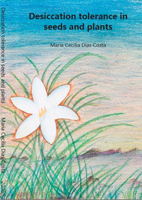 Recordings of Maria Cecília Dias Costa's PhD defence | Wageningen Seed Lab | Scoop.it