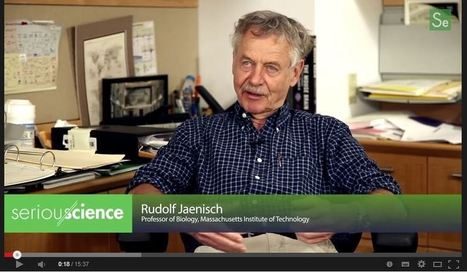Application of Stem Cells in Disease Therapy - Rudolf Jaenisch | Stem Cells & Tissue Engineering | Scoop.it