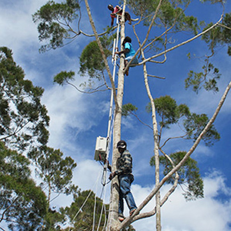 A Guerilla Mobile Network Springs Up in Indonesia | Edu Tech For Development | Scoop.it
