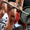 Fat loss & Muscle Building