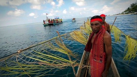 VIDEO: The Global Partnership for #Oceans  ~  A precious #environment #overfishing #seafood + @SylviaEarle | Rescue our Ocean's & it's species from Man's Pollution! | Scoop.it
