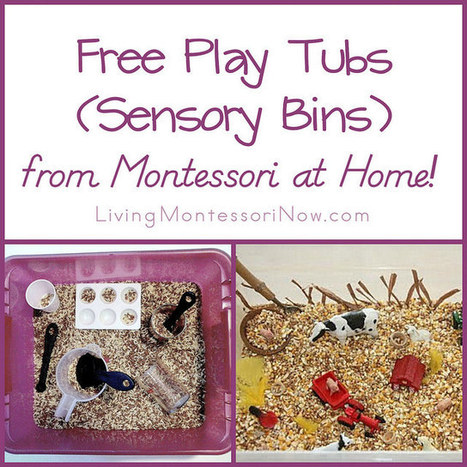Montessori Monday – Free Play Tubs (Sensory Bins) from Montessori at Home! | Montessori Inspired | Scoop.it