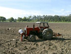 Cundinamarca dota de tractores a 26 comunidades agrícolas del ... - Radio Santa Fe | Regiones y territorios de Colombia | Scoop.it