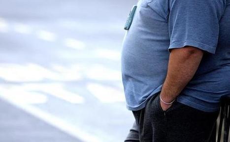 Discrimination au travail: Obèse, «mon patron m'a poussé à démissionner» | Les lapins agiles | Scoop.it
