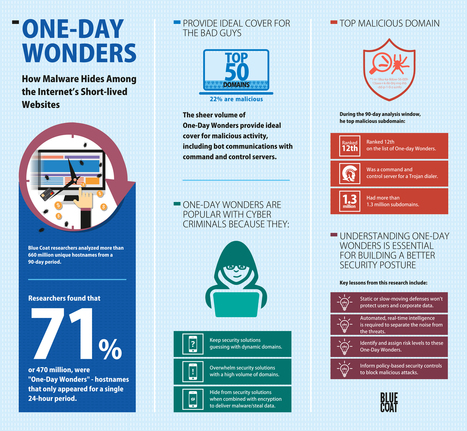 Blue Coat One-Day Wonders Infographic - Landscape Light on Egnyte | World of #SEO, #SMM, #ContentMarketing, #DigitalMarketing | Scoop.it