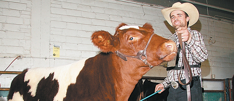 Alta. producer keen on Maine Anjou purebreds - Western Producer (subscription) | 4-H in Carleton County | Scoop.it