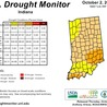The Impacts of Droughts