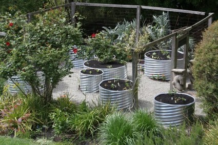 Culverts - an urban container garden | Upcycled Garden Style | Scoop.it