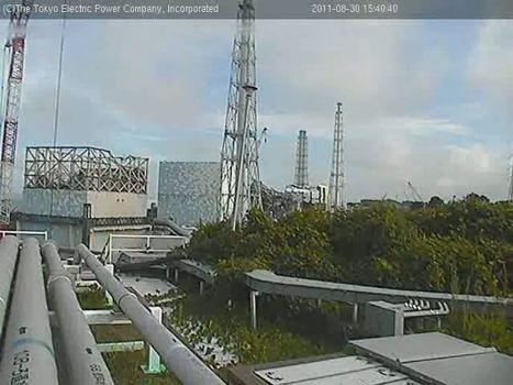 [Live Fukushima] Post ouvert aux commentaires | Tepcam | Japon : séisme, tsunami & conséquences | Scoop.it