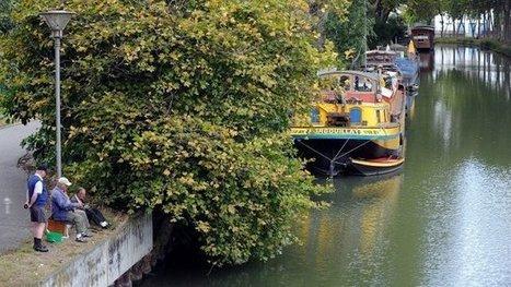 Les 350 ans du Canal du Midi en quelques dates - France 3 Midi-Pyrénées | Odyssea : Escales patrimoine phare de la Méditerranée | Scoop.it