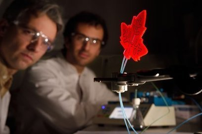 Artificial leaf as mini-factory for medicine | Longevity science | Scoop.it