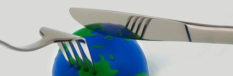 Manger sainement pollue! | Nutrition, Santé & Action | Scoop.it