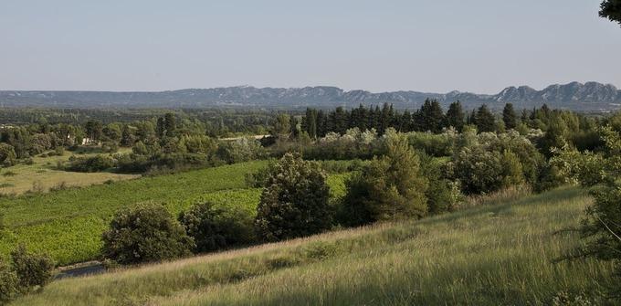 Agriculture et transition énergétique: lesatouts dubiogaz etdel'agroforesterie