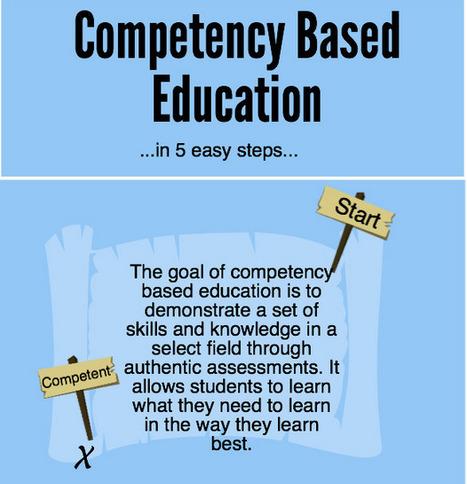 competency goal vi