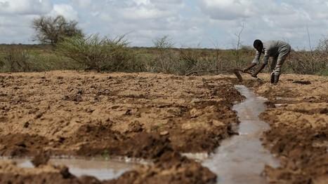 Oxfam – Nein, acht Menschen besitzen nicht so viel wie die Hälfte der Welt | Agrarforschung | Scoop.it