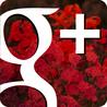 GooglePlus Expertise