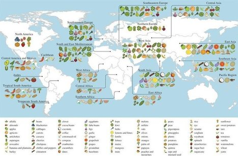 A Map Of Where Your Food Originated May Surprise You | Global Affairs & Human Geography Digital Knowledge Source | Scoop.it