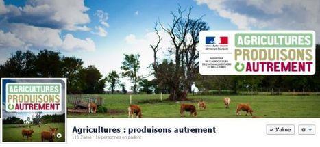 J'aime l'agroécologie, je rejoins sa page Facebook ! - Ministère de l ...   Agriculture et réseaux sociaux   Scoop.it