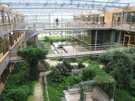 Les espaces verts, l'échappatoire urbain | biodiversité en milieu urbain | Scoop.it