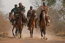 Here come the cavalry – Protecting Chad's elephants | Rhino poaching | Scoop.it