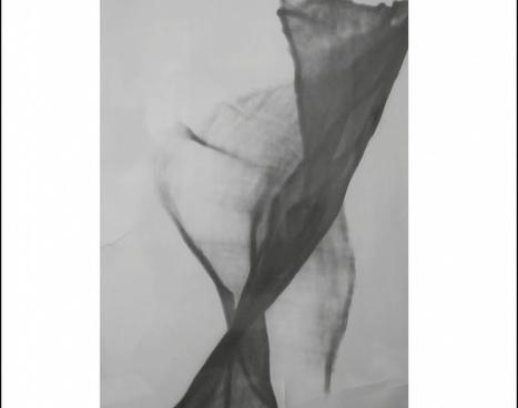 Le souffle de Denis Strulevitch Marrisson: une plume exigeante, pleine de souffle, de poésie. Des textes à savourer lentement, sur lesquels revenir à l'envi.   Mots & Langage   Scoop.it