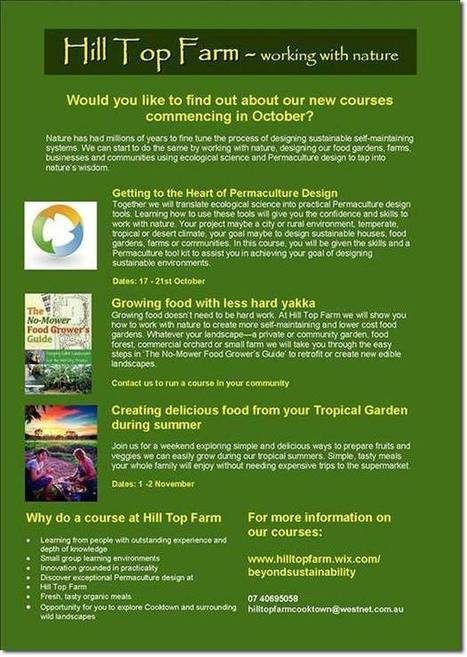 Using Practical Permaculture Principles to Help Us Think Like an Ecosystem   Sustainable Futures   Scoop.it