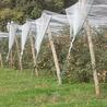 Exploitations agricoles et ateliers de transformation bio