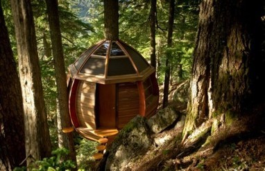 HemLoft: The Secret Treehouse in the Canadian Wilderness | e-Expeditions | e-Expeditions News | Scoop.it