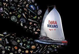 L'expédition Tara : toutes les infos et actualités - LCI | Remue-méninges FLE | Scoop.it