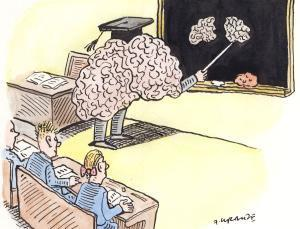 The High Cost Of Neuromyths In Education >> Neuroscience In Teaching Learning Policy Scoop It