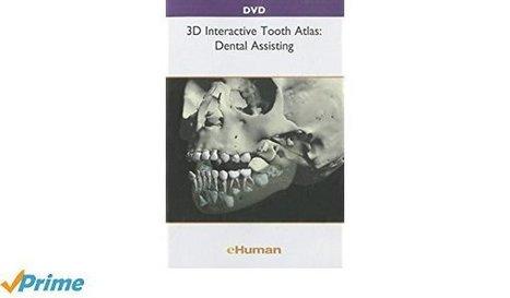 3d tooth atlas free download eseachprestocin 3d tooth atlas free download fandeluxe Images