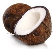 Coconut Oil and Weight Loss – Facts vs. Fiction: what you need to know about coconut oil and losing weight! | Health Impact News | Bicol Coconuts | Scoop.it