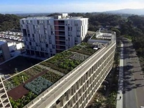 Green Roof Grows on California University Dorm | Vertical Farm - Food Factory | Scoop.it