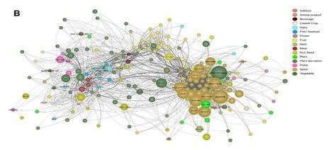 Data Mining Indian Recipes Reveals New Food Pairing Phenomenon | Social Simulation | Scoop.it